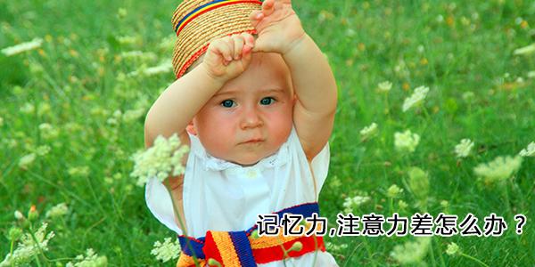 杭州怎样用事增强孩子记忆力