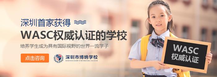 深圳有哪些民办学校