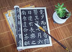 上海少儿国学培训加盟