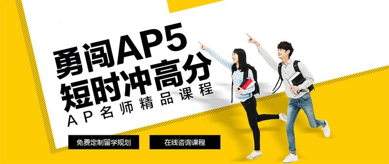 上海AP艺术培训周末班