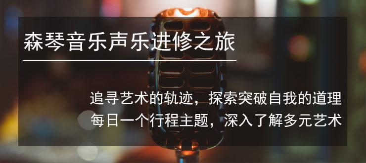 深圳学声乐培训