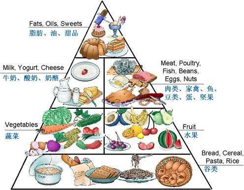 搭配均衡饮食_