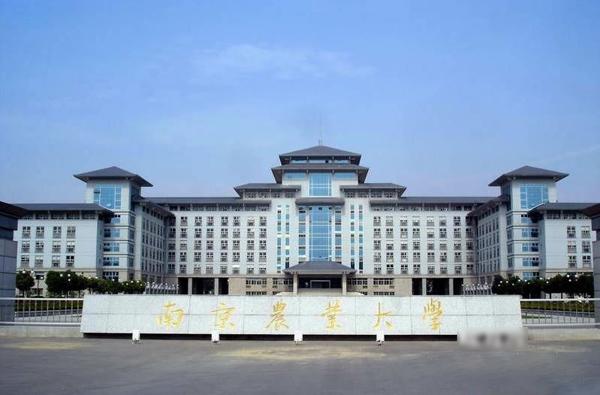"""南京农业大学排名:""""也有不少培植专家则仍然"""