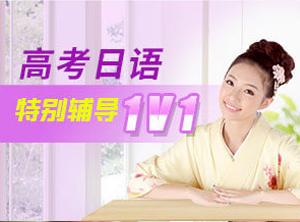 高考日语特别辅导1V1